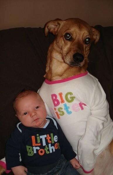 Doggie Big Sister