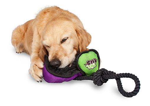 rip 'n tug dog toy