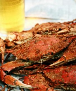 #47 Maryland Blue Crab Feast