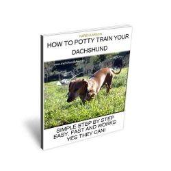 Dachshund Potty Training