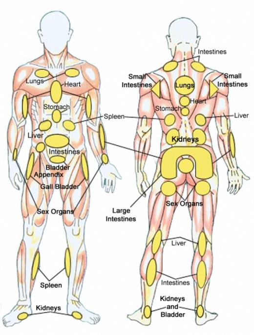 Massage Healing Chart