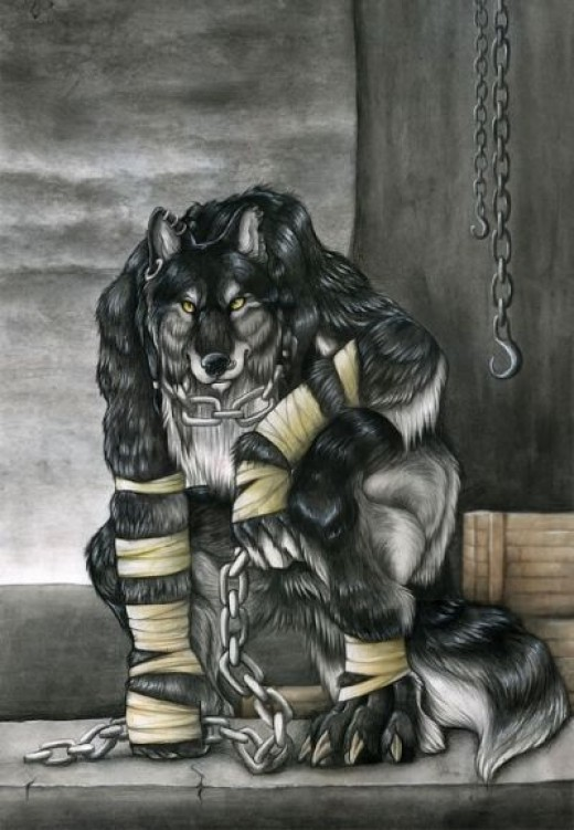 Wolf in chains pic