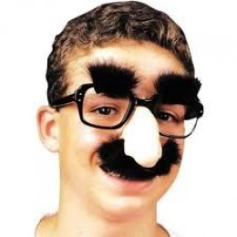 Fake bushy brows and mustache