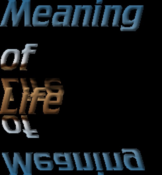 What is the True Meaning of Life