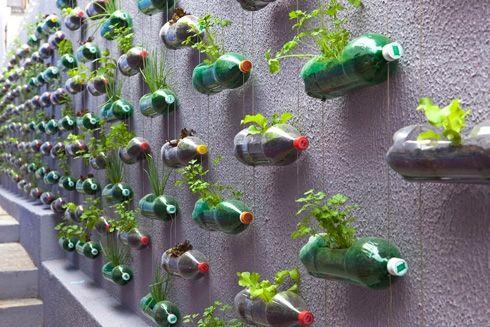 Plastic Bottles Garden - Recyclart.org