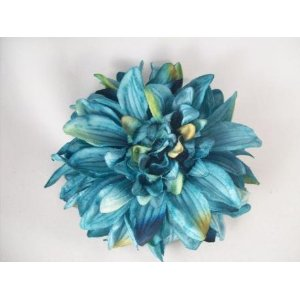 Turquoise Summer Hair Clip from Amazon