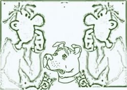 Pit Bull Behavior