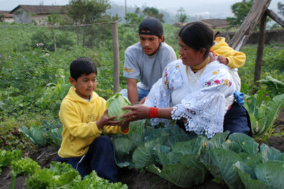 A single mother living in northern Ecuador, works in her garden with her children for their food production. Following a model set up by the Church's Benson Institute, each year the family plants a large vegetable garden. The crops provide for most o