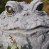 Lynnzee profile image
