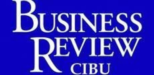 Business Review Writers