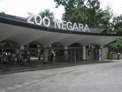 The Animals of The National Zoo of Malaysia