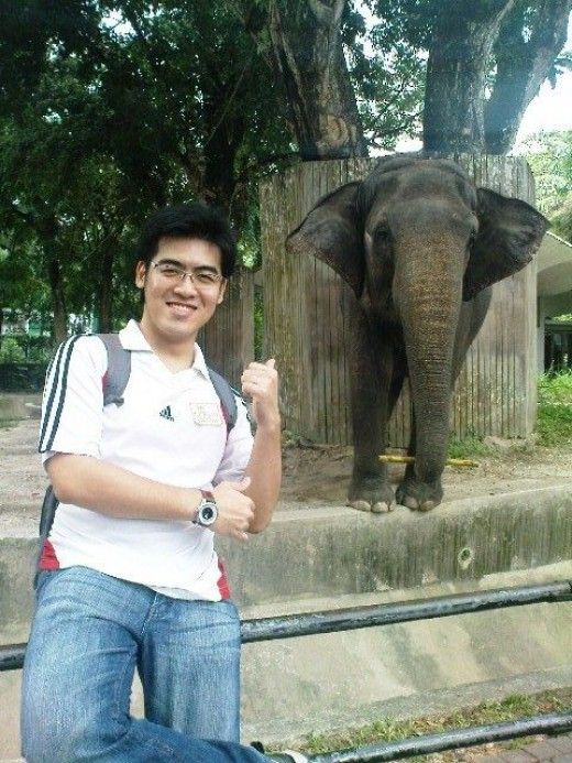 Check out my buddy here, the Malaysian Elephant!
