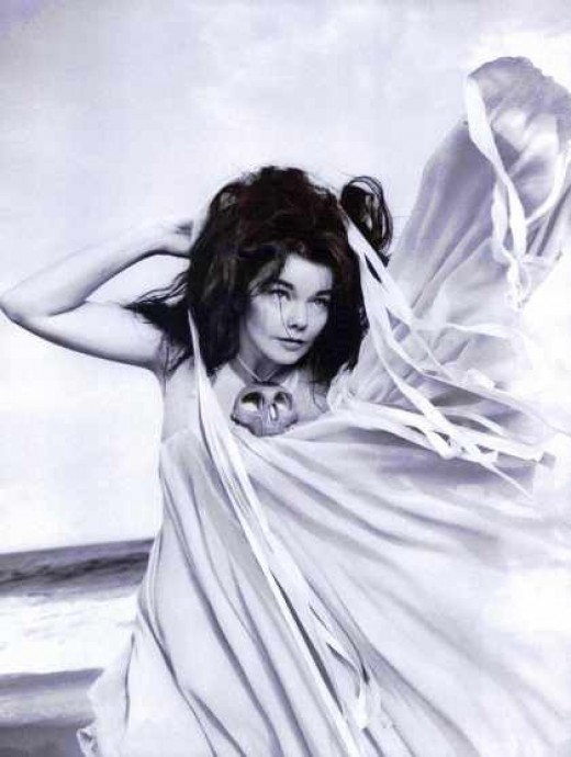 Bjork photographed by Inez and Vidhooz