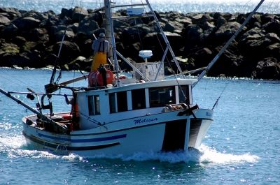 Brookings, Oregon Fishermen