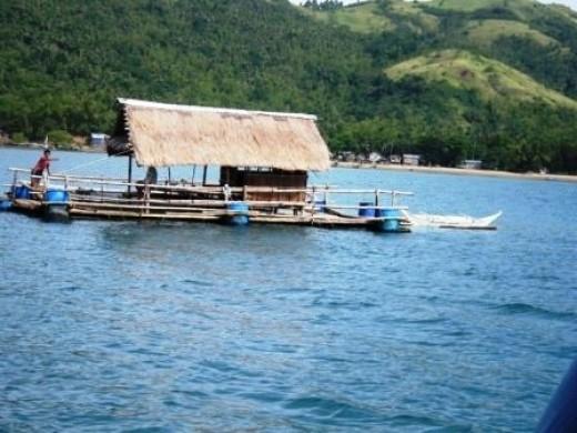 Private Ferry in Concepcion