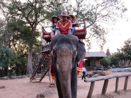 Elephants giving tourists a ride to the temple