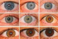 Different eye colors