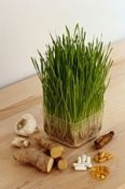 7 Ways Wheatgrass Helps Your Body