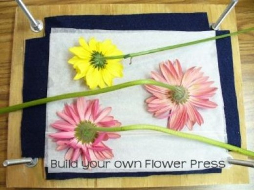 Build Your own Flower Press