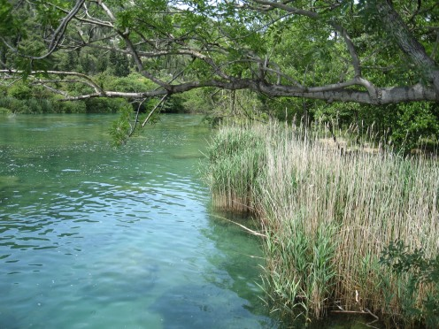River Krka, NP KRKA; Croatia, photo by Tatjana-Mihaela Pribic