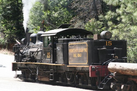 The No 15 Locomotive and Tender