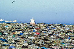 Our responsibility towards environment essay pollution
