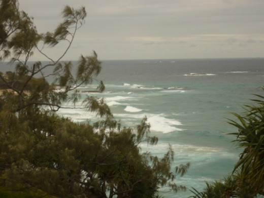 View from from the cliff walk at Point Lookout