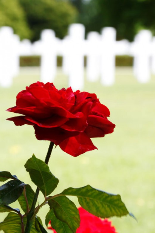 war memorial public domain