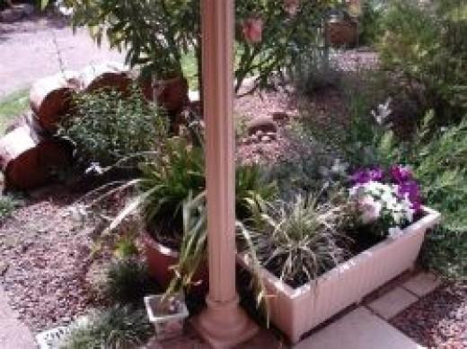 front garden at Tenambit