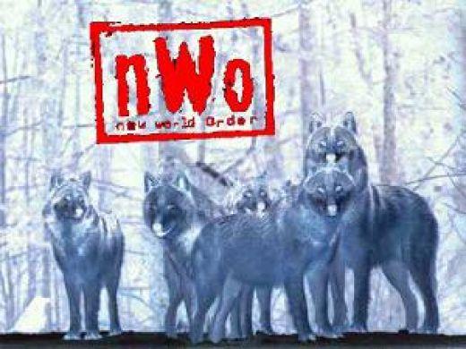 NWO Wolfpack Logo