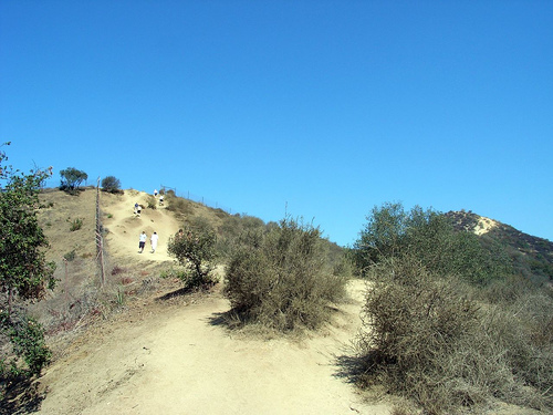 Runyon Canyon pic
