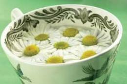 Ok -- I don't like my herbal tea THAT herbal!