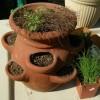 Herb Container Garden