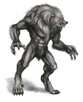 Werewolf evolution
