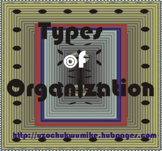 Types of organization in management