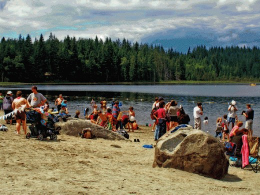 Whonnock Lake in Maple Ridge is a lovely spot to spend a day at the beach with family and friends