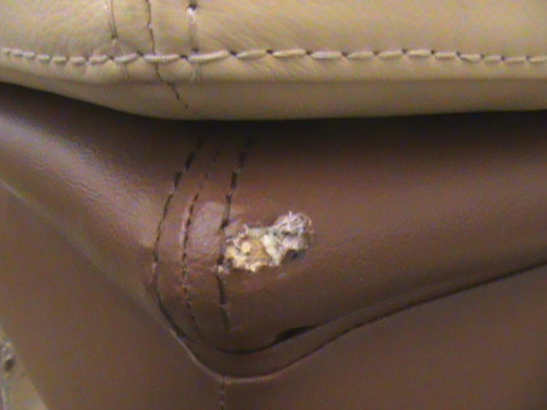 Pet damage from a dog chewing this leather ottoman