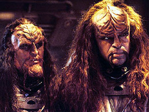 We Are Klingons!