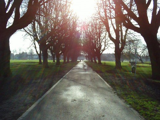 The sun shining is the centrepiece of this photo, aswell as the pathway.