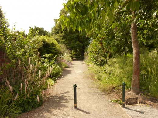 A walkway at Mona Vale, Christchurch, New Zealand