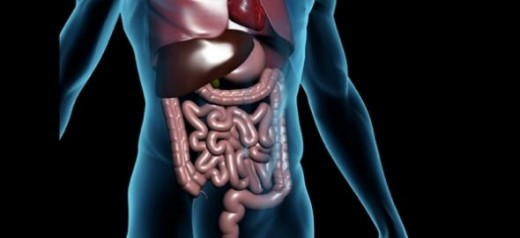 Medical Quiz: gastrointestinal system