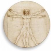 Vitruvian-man profile image