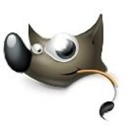 How to use GIMP IWarp