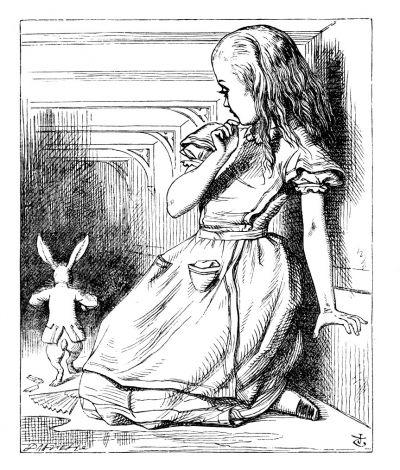 Alice's Adventures in Wonderland, drawn by John Tenniel.