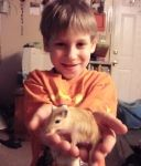 Our other gerbil.