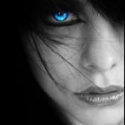 niddz profile image
