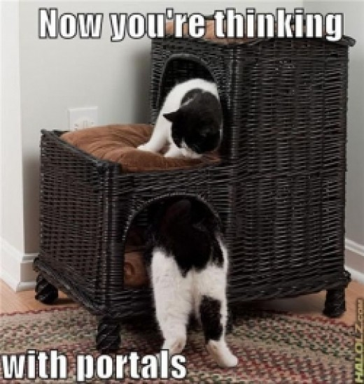 Now You're Thinking With... LOLCats
