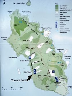 A map of the island posted down near the jetty