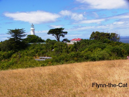 Further along the Ridge track, the view of the lighthouse, information centre and accommodation (and the solar panels!)
