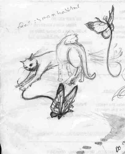 The Cat Butterfly Dragon Sketch